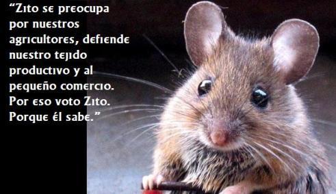 raton.jpg