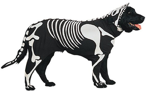 Doggie-Bones-Pet-Costume